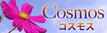 飛田新地料亭|Cosmos(コスモス)